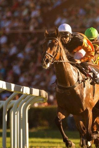 Irelands richest race - Dubai Duty Free Irish Derby returns to